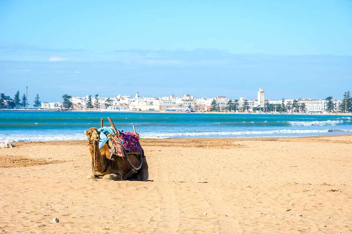 Resultado de imagen de playas de Essaouira
