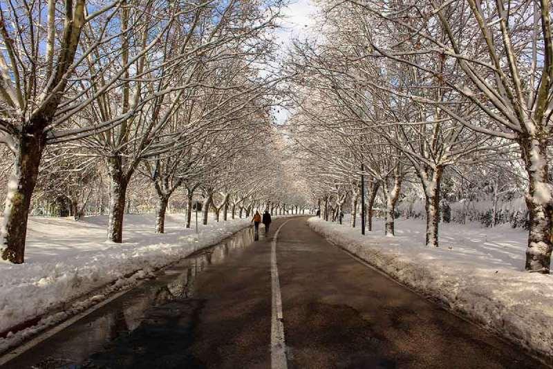 viajar a Ifrane en invierno