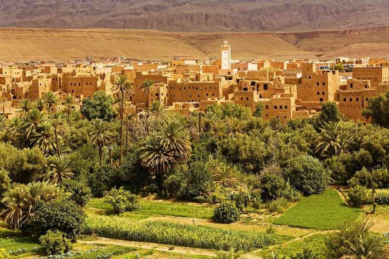 Palmeral de Ouarzazate
