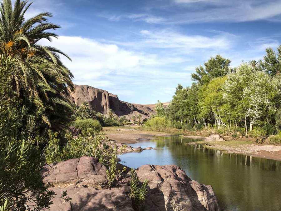 Reserva de la Biosfera en los oasis de Marruecos