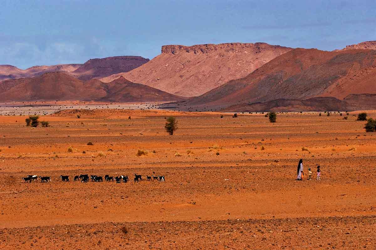 Desierto salvaje de Ouzina