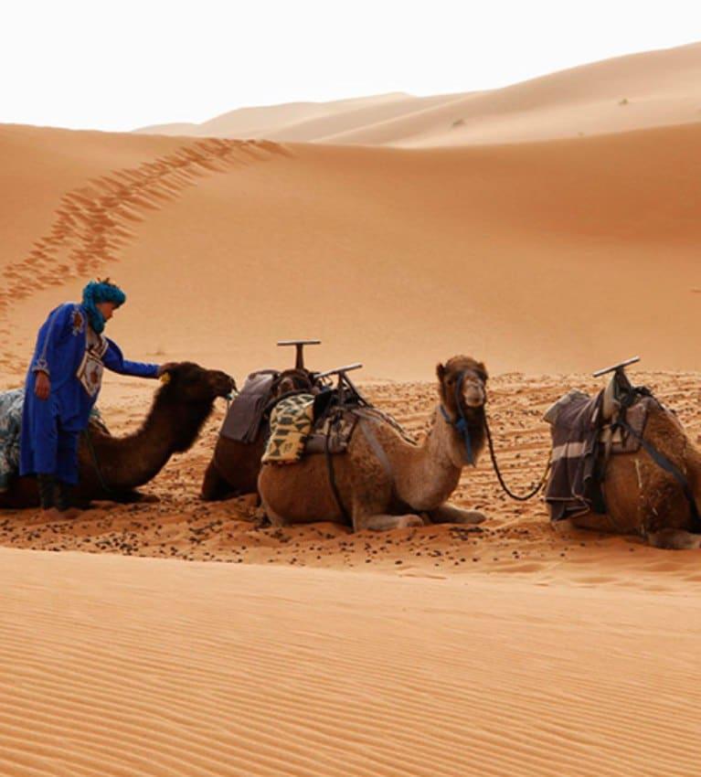 circuito por marurecos y marrakech