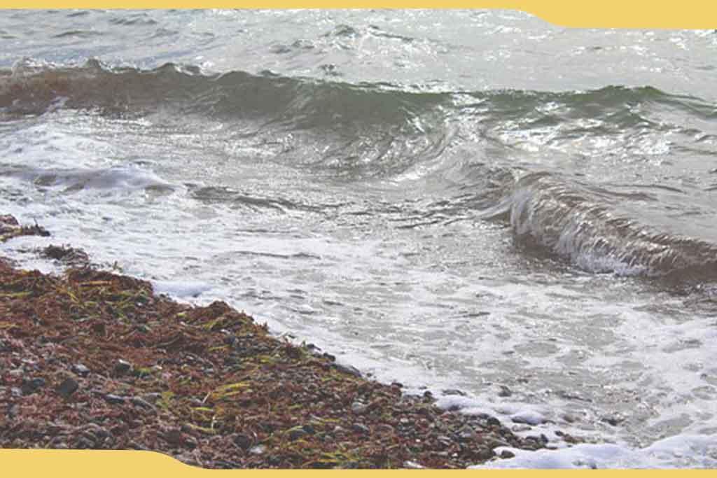 costa-del-Estrecho