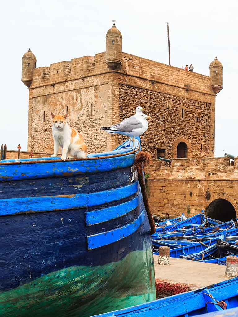 Excursion a Esaouira