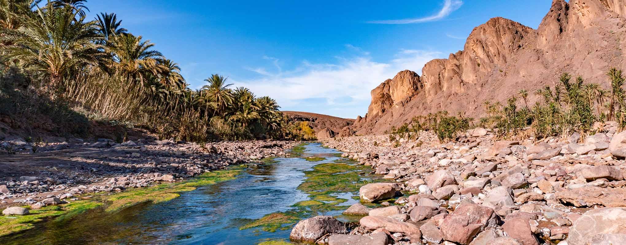 Oasis de Fint en Ouarzazate