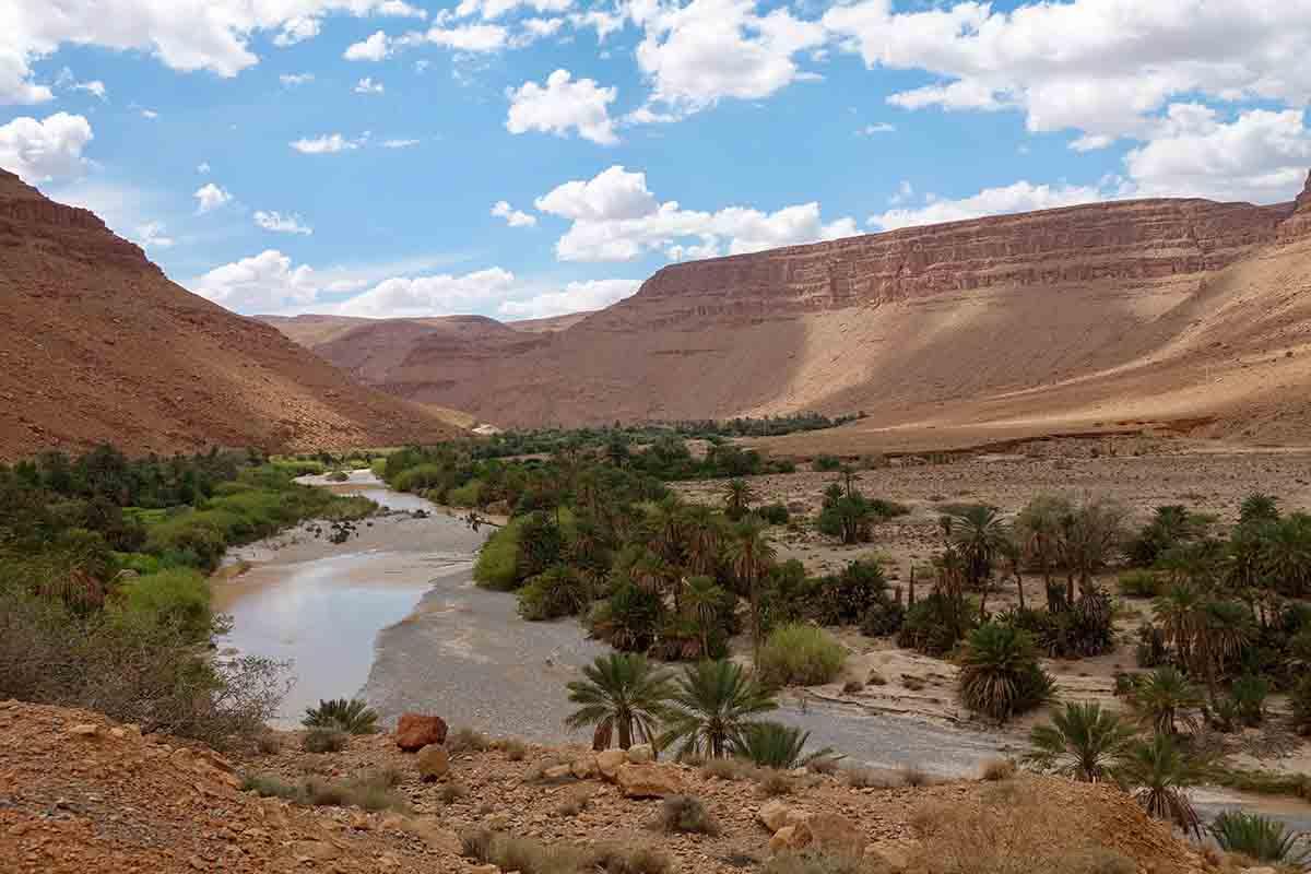 Oasis Valle del Draa